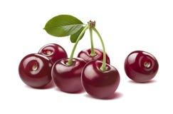 Glansigt rått för lösa körsbär som isoleras på vit royaltyfria foton