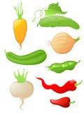 glansowane ikony ustawiający warzywo Fotografia Royalty Free