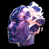 Glansowanej kobiety kierowniczy wybuchać zamykam - migrena, umysłowi problemy, stres ilustracja wektor