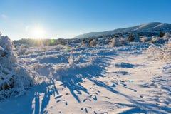 Glanst de de winter verbazende zonsondergang op sneeuw behandeld gebied met berg Stock Foto