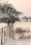 Glanton snowy views Stock Image