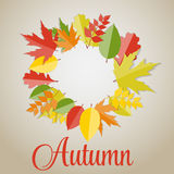 Glanzend Autumn Natural Leaves Background Vector Royalty-vrije Stock Foto