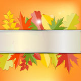 Glanzend Autumn Natural Leaves Background Vector Stock Foto's