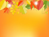 Glanzend Autumn Natural Leaves Background Vector Stock Afbeelding
