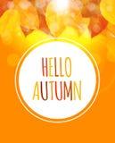 Glanzend Hello Autumn Natural Leaves Background Vector illustratie Stock Afbeelding