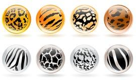 Glanzende ballen Stock Fotografie