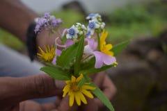 Glanzende bloemen van harishchandrafort royalty-vrije stock fotografie