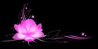 Glanzende lotusbloem Stock Foto's
