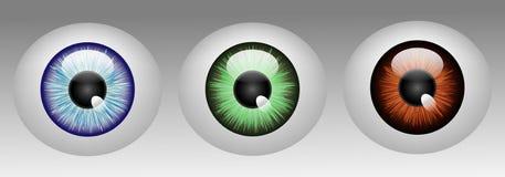 Glanzende menselijke oogappels Stock Illustratie