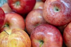 Glanzende rode en gele appelen Stock Afbeeldingen