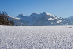 Glanzende sneeuwkristallen Stock Foto's