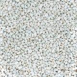 Glanzende vlotte natuurlijke witte stenen royalty-vrije stock afbeelding
