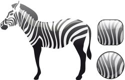 Glanzende zebra met gestreepte knopen Royalty-vrije Stock Foto's