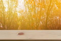 Glanzende zonlichtachtergrond met lege houten Stock Foto's