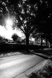 Glanzende zwart-witte straat bij de tuin Stock Afbeelding
