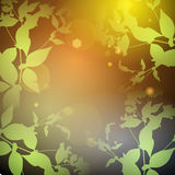 Glare, green leaves on a black background. Round banner for text. Vector Stock Photo
