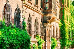 The glare of the sun falls on a green wall, an old building, a beautiful urban architecture, blossoming streets stock images