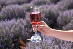 Girl holds the glass of wine on her hand in the lavender fields royalty free stock photo
