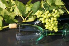 Glas και μπουκάλι κρασιού Στοκ Φωτογραφίες