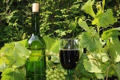 Glas и бутылка вина Стоковые Фотографии RF