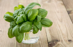 Glas with Basil on wood Royalty Free Stock Photography