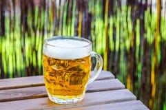 Glas bier Stock Foto