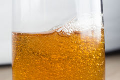 Glas Bier auf weißem Hintergrund Stockfoto