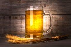 Glas bier en gerstgraankorrel Het stilleven van het bier Royalty-vrije Stock Foto