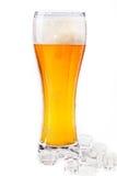 Glas Bier getrennt auf einem weißen Hintergrund Stockfoto