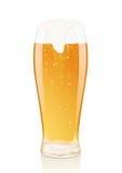 Glas Bier mit Schaumgummi und Phiolen vektor abbildung