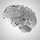 A glas brain Royalty Free Stock Photo