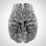 A glas brain Royalty Free Stock Images