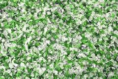 Glas cassés blancs et verts Réutilisez le fond Photographie stock