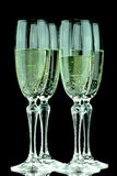 Glas of Champagne Stock Image