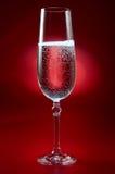 Glas Champagner auf Rot Stockbilder