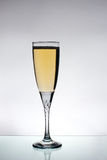 Glas champange Lizenzfreies Stockbild