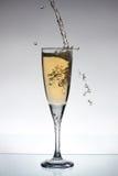 Glas champange Stockfoto