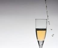 Glas champange Stockfotos