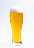Glas des Bieres auf weißem Hintergrund Stockfotografie