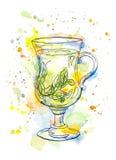 Glas des grünen oder Kräutertees watercolor Stock Abbildung