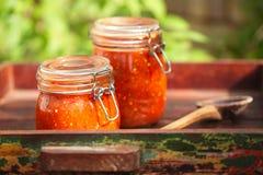 Glas des Hauses machte klassische würzige Tomatensalsa Stockbilder