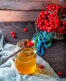 Glas des Honigs und des Viburnum auf hölzernem Hintergrund Lizenzfreie Stockfotografie