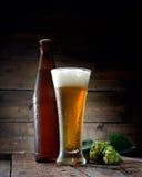 Glas des kalten schäumenden Bieres, der Flasche und des Hopfens auf einem hölzernen Hintergrund Lizenzfreies Stockbild