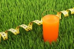 Glas des Orangensaftes und des Meters auf dem grünen Gras Lizenzfreies Stockbild