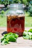 Glas des Sonnentee-Sommergetränks Stockbild