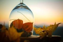 Glas do outono com folha de bordo Fotografia de Stock Royalty Free