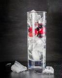 Glas Eis mit Beerenstachelbeerroten Schwarzen Johannisbeeren und -wasser Auffrischungscocktail Orange und Carafe mit Zitrusfrucht Stockbild
