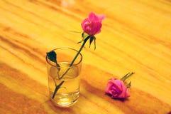 Glas en bloem Royalty-vrije Stock Fotografie