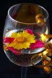 Glas en bloem Royalty-vrije Stock Foto