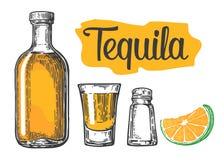Glas en botlle van tequila Cactus, zout, kalk Glas en botlle van tequila Cactus, zout en kalkhand getrokken schets stock illustratie